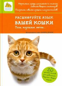 Расшифруйте язык вашей кошки. Позы, мяуканье, метки...