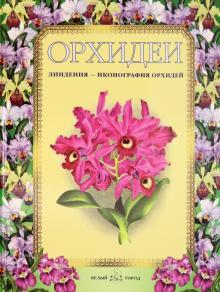 Орхидеи. Линдения - иконография орхидей
