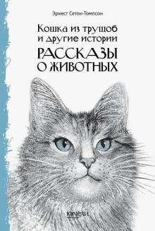 Кошка из трущоб и другие истории