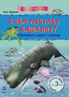 О чём мечтает кашалот? Обитатели морей и океанов