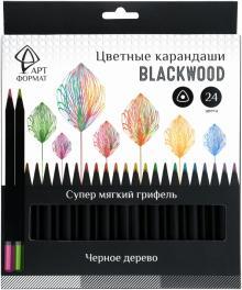 Карандаши цветные, черное дерево, 24 цвета (AF03-051-24)