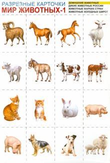 Мир животных-1. Комплект разрезных карточек. А4