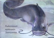 Рыболовный календарь Завидонова