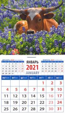 Календарь на магните  94х167
