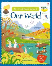 My First Book About Our World - Felicity Brooks