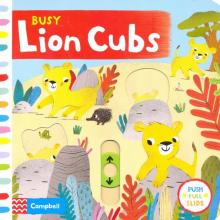 Busy Lion Cubs - Macmillan Publishers