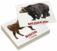 Комплект мини-карточек Wild animals/Дикие животные (40 штук) - Носова, Епанова