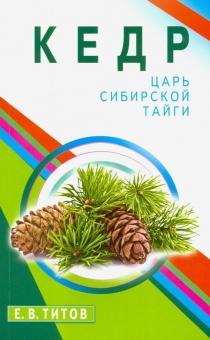 Kedr - tsar sibirskoj tajgi