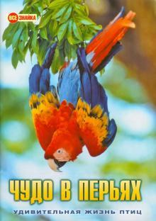 Чудо в перьях. Удивительная жизнь птиц