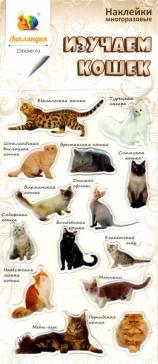 """Набор леденцовых наклеек """"Изучаем кошек"""""""