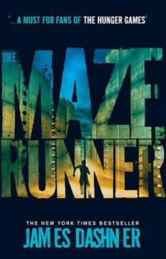 Maze Runner Prequel