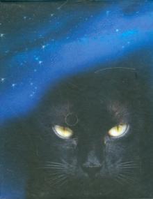 """Магический блок для записей """"Черная Кошка"""""""