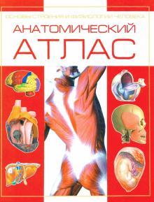Анатомический атлас. Основы строения и физиологии человека